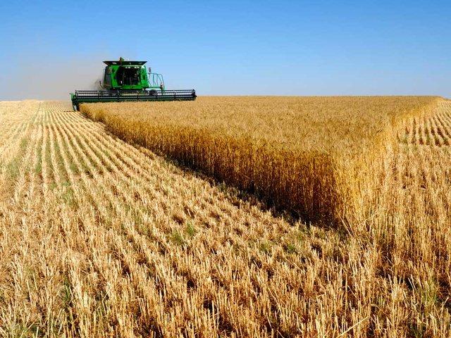 خوزستان، پیشانی کشاورزی کشور است