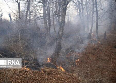 پنج هکتار از جنگلهای دزفول در آتش سوخت