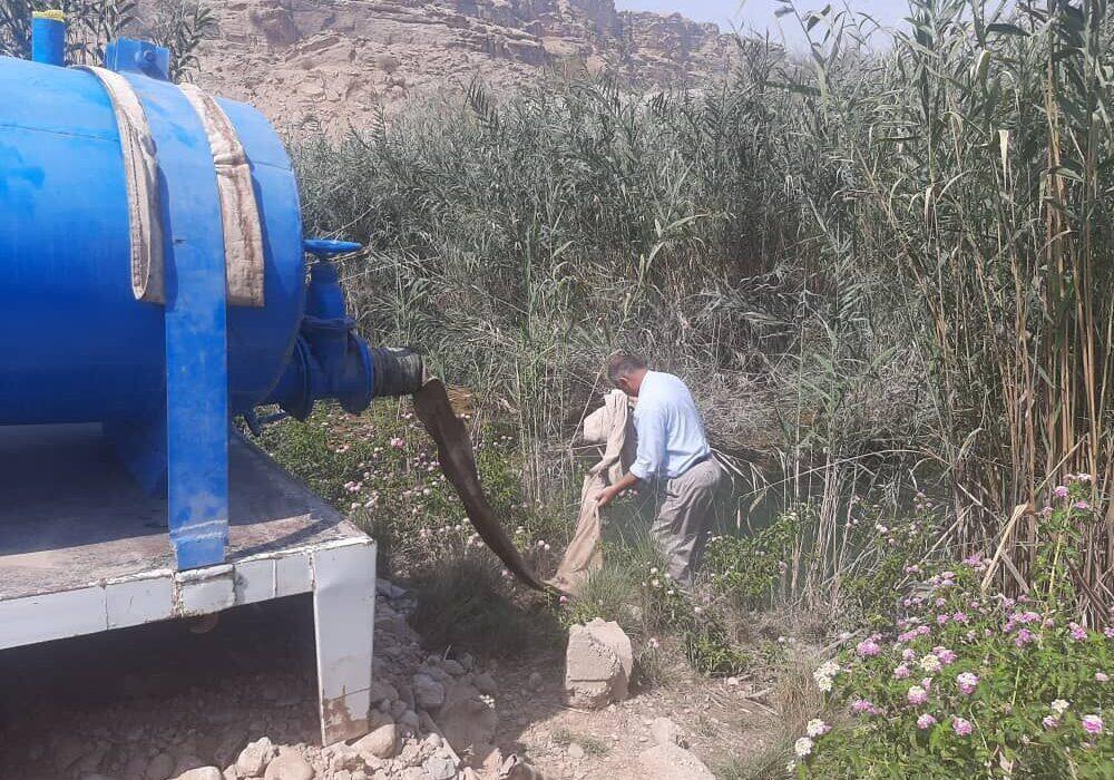 ۳۳۰هزار قطعه بچه ماهی در دریاچه سد تنظیمی گتوند رهاسازی شد